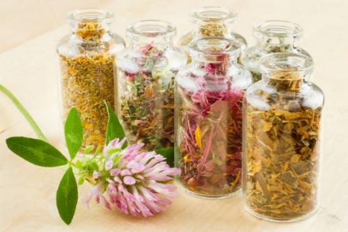proprietăți de vindecare ale echinaceei pentru durerile articulare